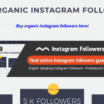 buy real active Instagram followers